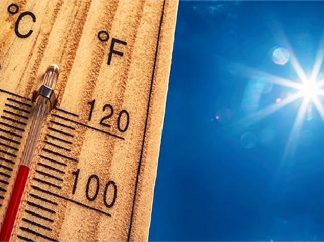 Recommandations lors d'une vague de grande chaleur