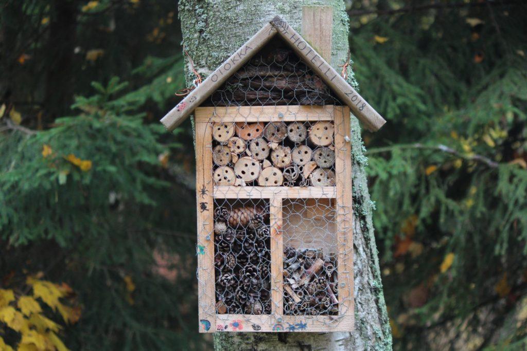 Insektenhoteller