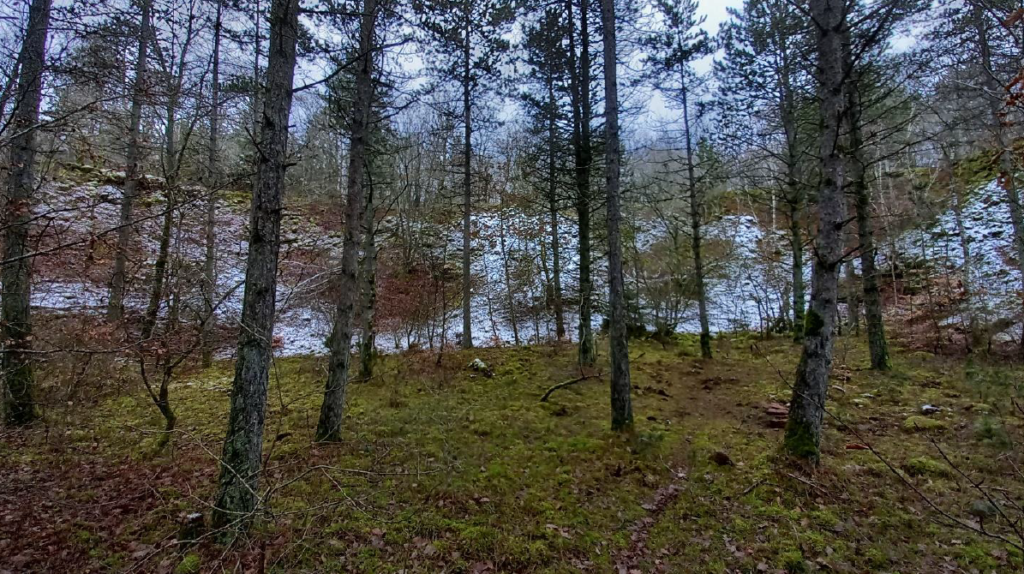 Chantier nature au Brucherbierg